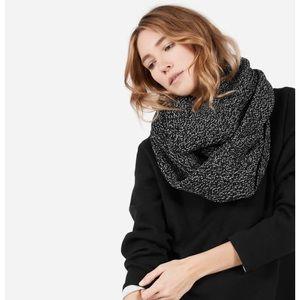 Everlane Chunky Wool Infinity Scarf